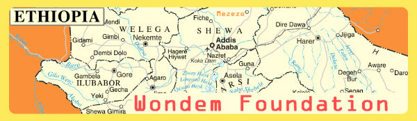wondem-foundation
